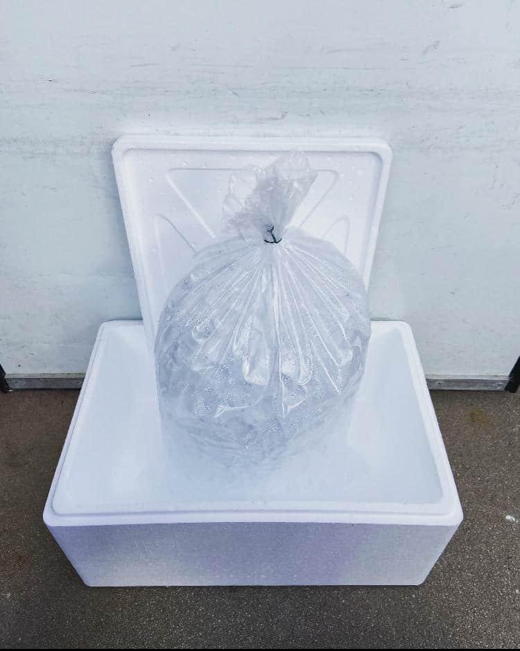 bac isotherme en polystyrene